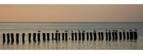 baltic evening by edelherb