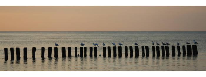 baltic evening