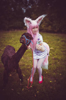 Don't be shy alpaca-chan