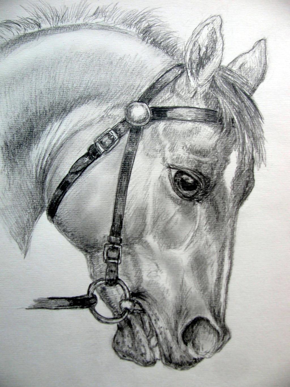Racer by chrisravensar