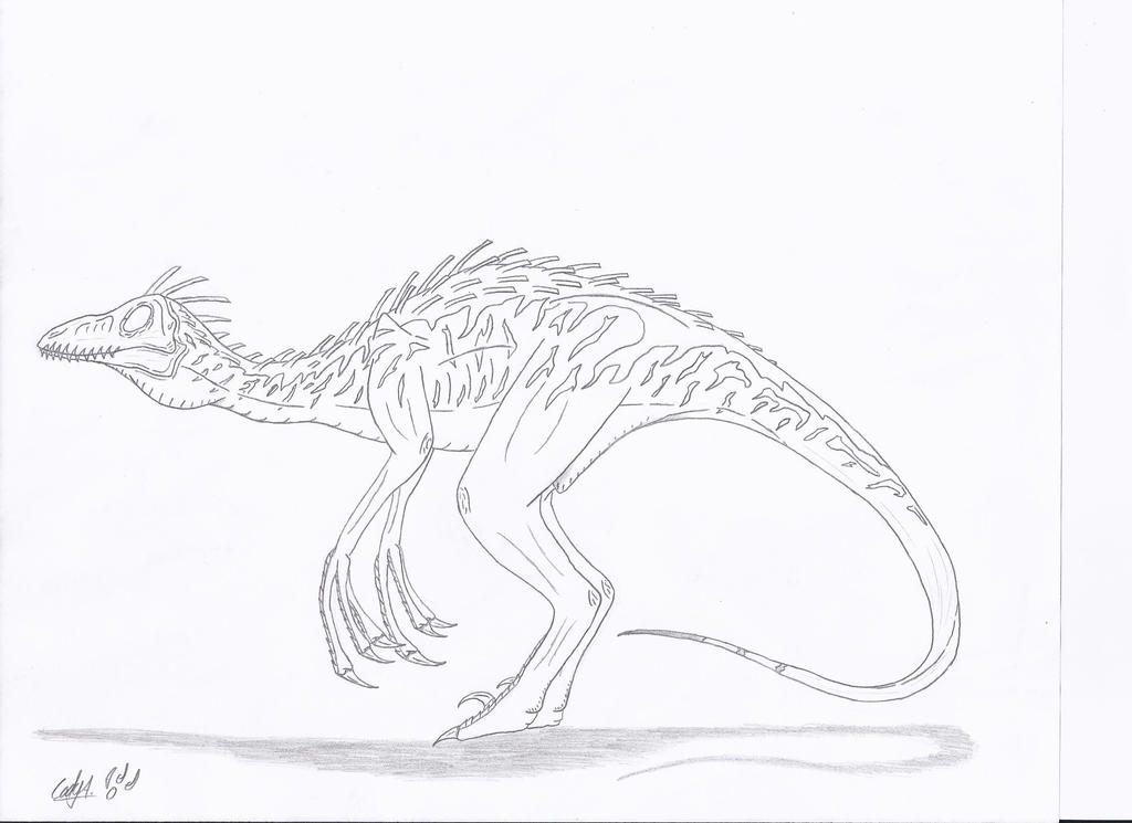 Jp troodon pectinodon no color by sinncrow on deviantart for Troodon coloring page