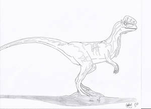 JP: Dilophosaurus Veneifer No Color