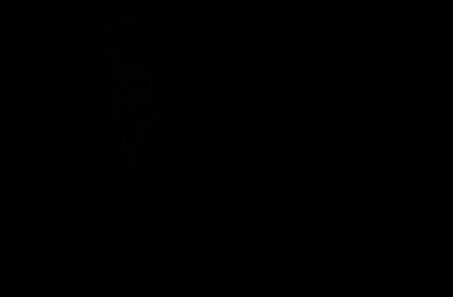 One Piece Lineart : Nami sanji lineart by redflagxdrake on deviantart