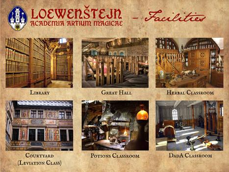 Loewenstejn - Academia Artium Magicae - Page 8