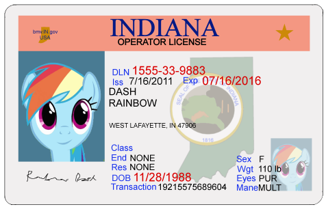 Rainbow Dash Indiana Driver's license