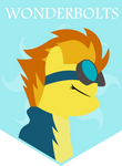 Wonderbolts by totallynotabronyFIM