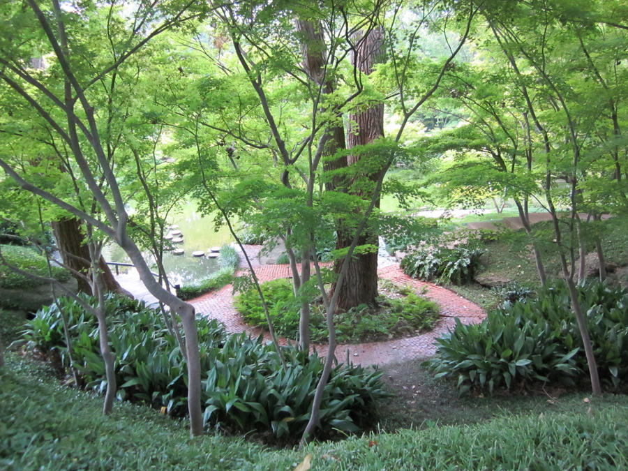 Japanese Garden In Dallas, TX By Ziphenia ...