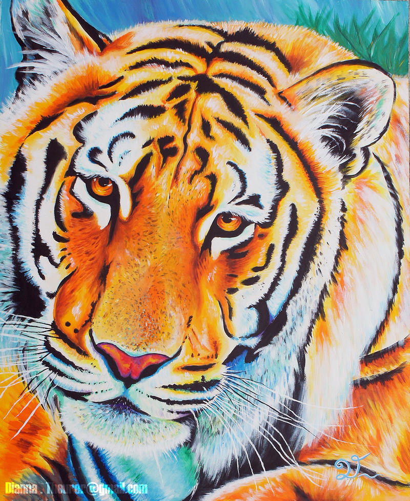 Colorful Tiger Pictures