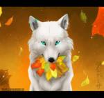 Snowwool