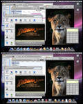 Mac OS X vs WinXP