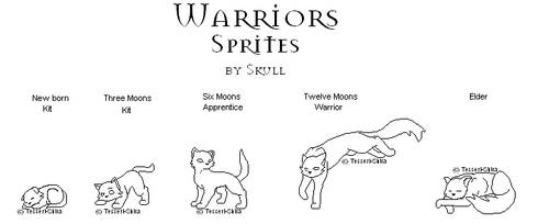 Free Warriors Cats Sprites by Nova-Nocturne