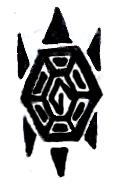 Turtle tattoo by Tesseri-Shira
