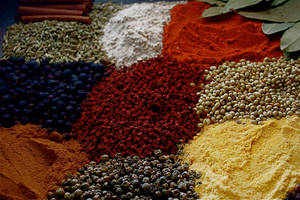 herbs and spices by Angela-Hellcat