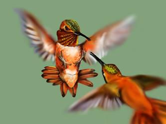 Hummingbird #5 by ceredwyn