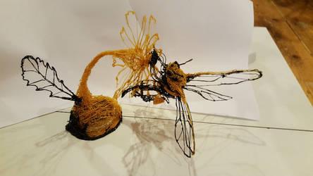 Bee on Daisy by ceredwyn