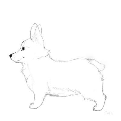 Dog2 by Munkari