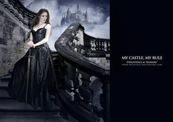 My Castle, My Rule by paustinus