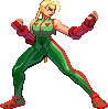 sf3 Cammy edit by HIIVolt-07