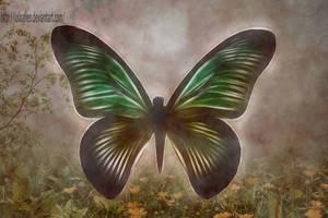Mariposa by LoloAlien