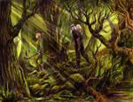 Brokilon Forest