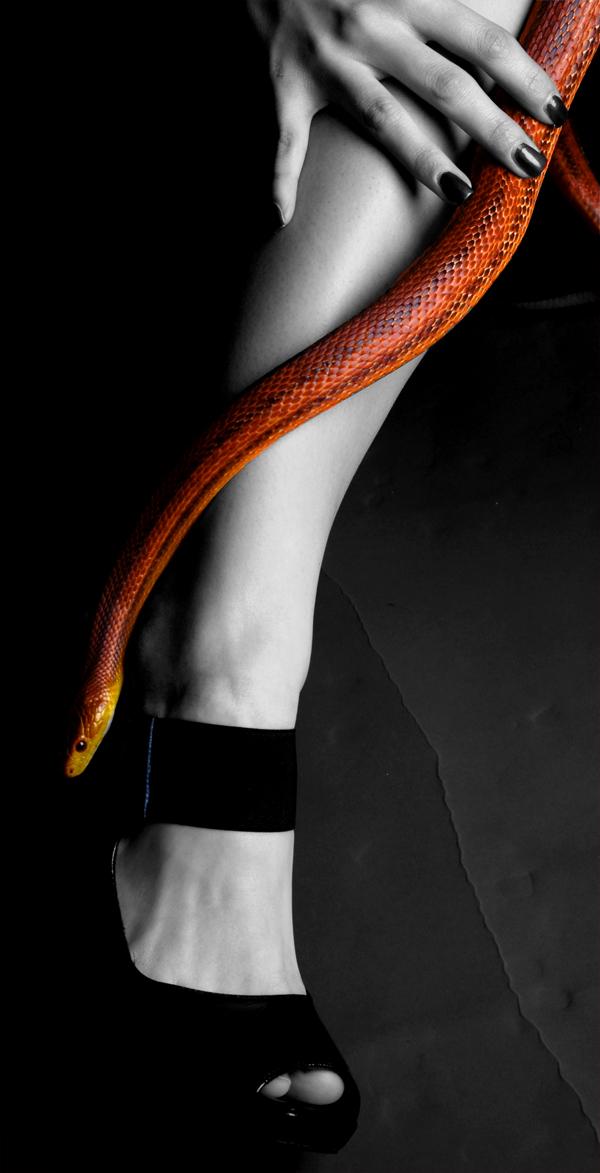 Razbijemo monotoniju bojom - Page 3 Snake_and_foot_by_brokensmile13