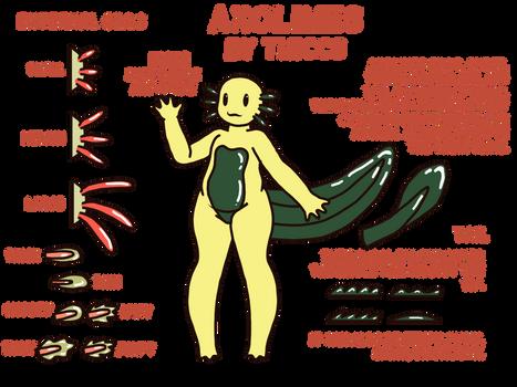 Axolimes Species