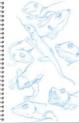 Monitar lizard by minkz10