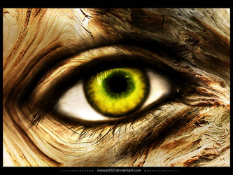 Eye of nature by nessa022