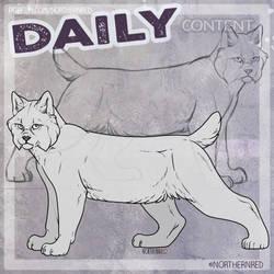 DAILY - lynx