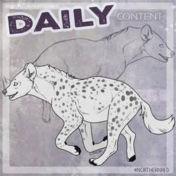 DAILY - hyena