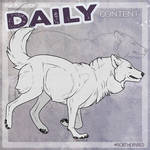 DAILY - wolf