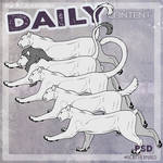 DAILY - big cats