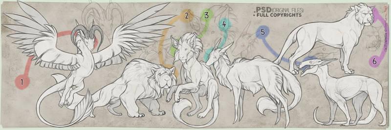 CHARACTER/SPECIES CONCEPT + FULL PERMIS|OPEN 6/6