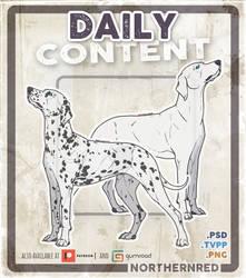 Dalmatian dog pose