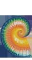 An Ammolite, an opal-like bit of fossilized ammonite with an iridescent sheen.