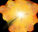 Sparkler by Esk-Masterlist