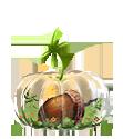 A glass pumpkin-shaped terrarium, holding new growth and an acorn inside.