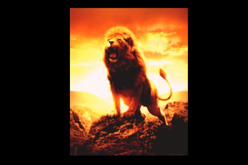 Aslan Roaring By Liquidfire101
