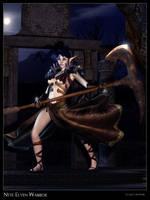 Nyte Elven Warrior
