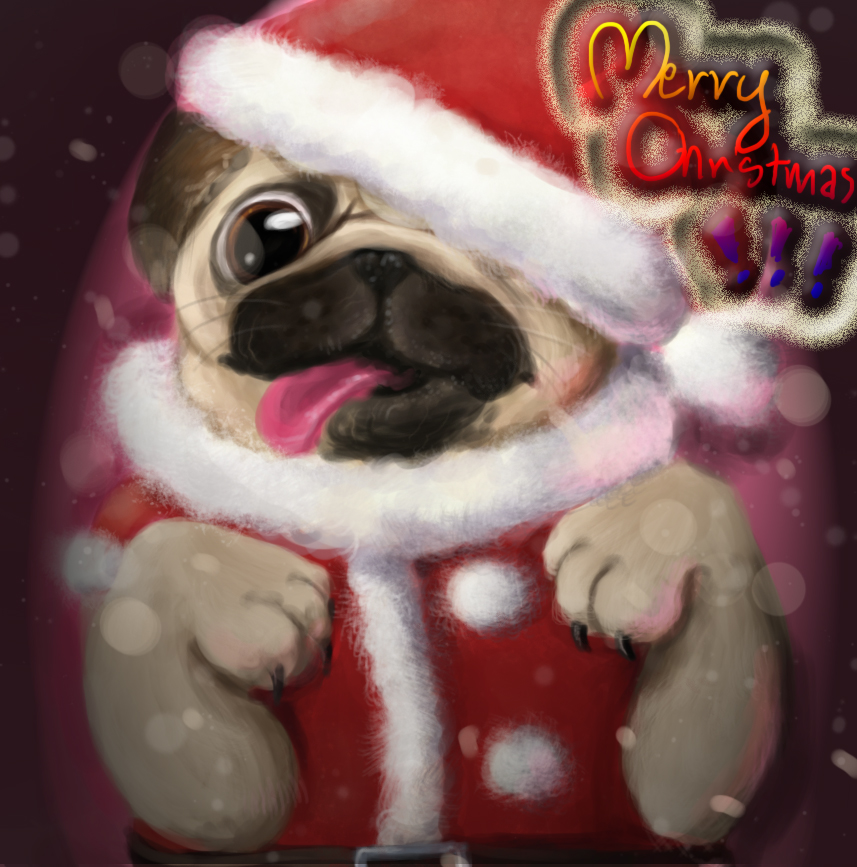 Late Merry Christmas! by Hikaru-Amuto-fan