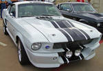 Shelby Racing Stripes