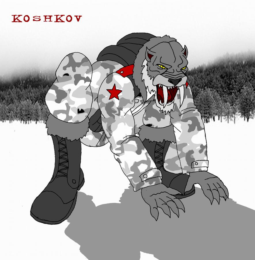 Koshkov by AlexeiKazansky