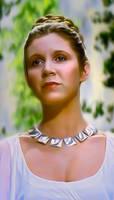 princess Leia by petnick
