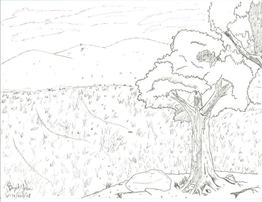 How to draw grasslands biome