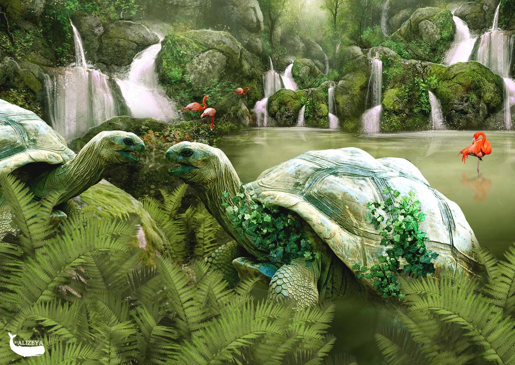 Turtles by byAlizeya