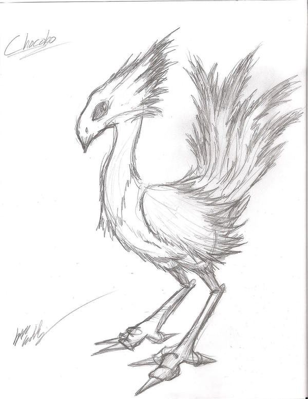 Chocobo Sketch by Irken-Invader-Sam