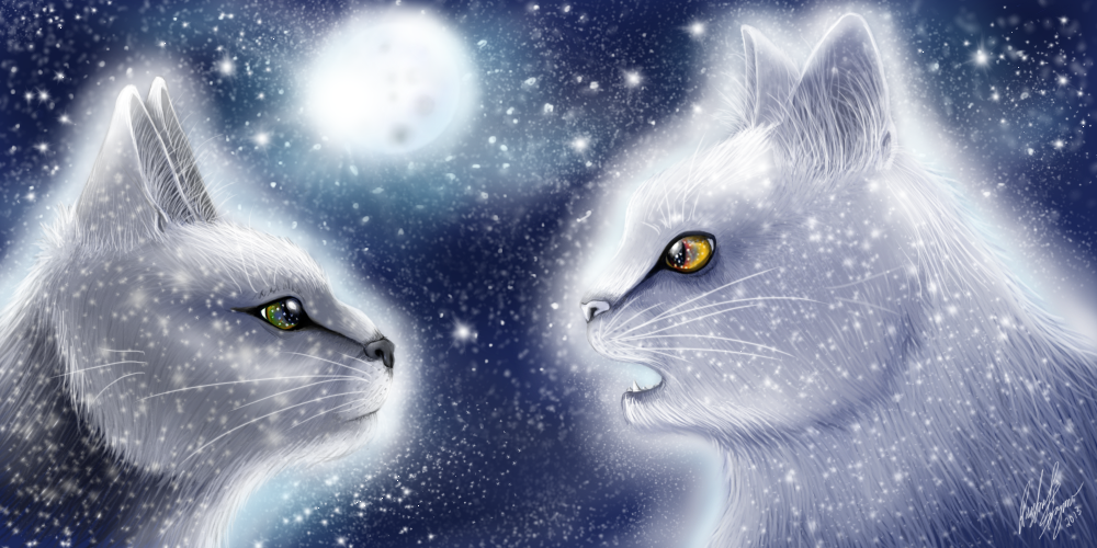 gallery for warrior cats wallpaper starclan