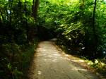 down the green path