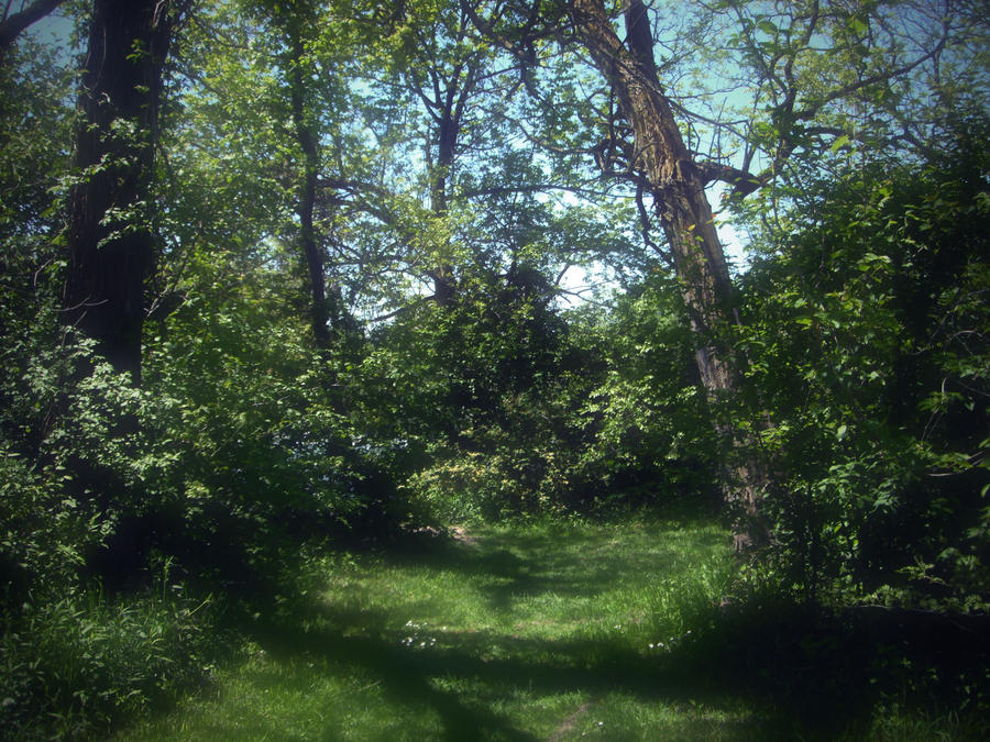 a secret little dream spot by mysteriousfantasy