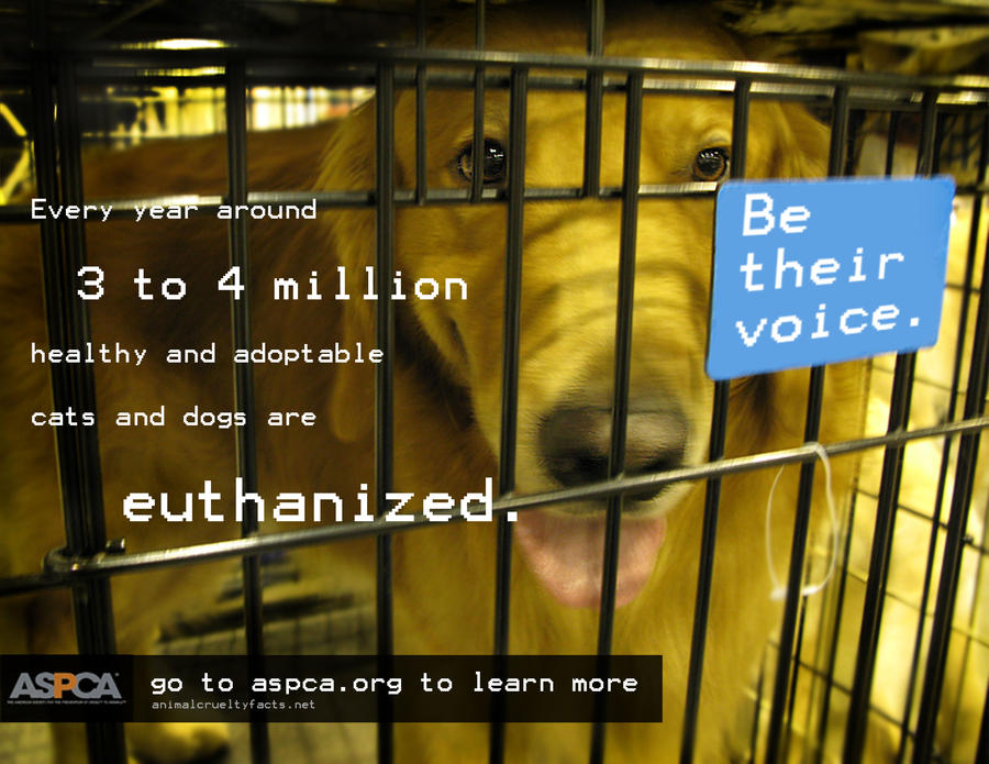 Euthanasia Facts For Kids